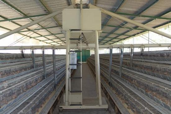 Продажа бизнеса ферма работа фасовщик от прямых работодателей свежие вакансии