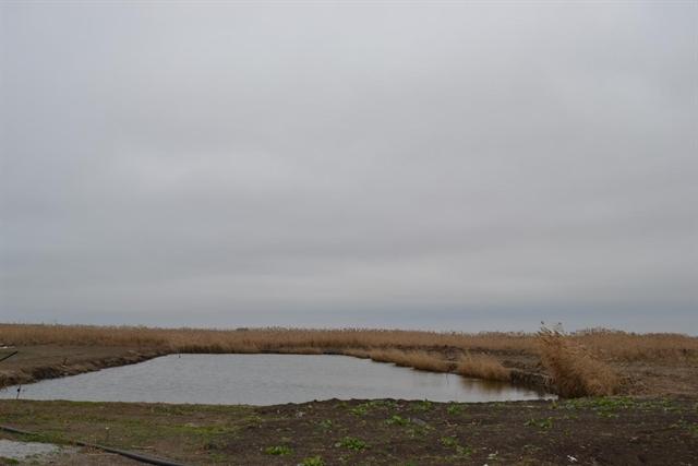рыбалка в горьком лимане каневской район видео